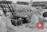 Image of Women Land Army United Kingdom, 1939, second 40 stock footage video 65675053192