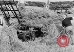 Image of Women Land Army United Kingdom, 1939, second 41 stock footage video 65675053192