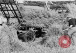 Image of Women Land Army United Kingdom, 1939, second 42 stock footage video 65675053192