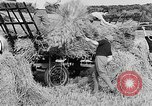 Image of Women Land Army United Kingdom, 1939, second 43 stock footage video 65675053192