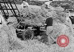 Image of Women Land Army United Kingdom, 1939, second 44 stock footage video 65675053192