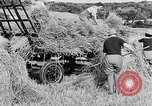 Image of Women Land Army United Kingdom, 1939, second 45 stock footage video 65675053192