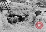 Image of Women Land Army United Kingdom, 1939, second 46 stock footage video 65675053192