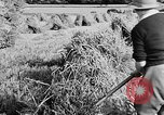 Image of Women Land Army United Kingdom, 1939, second 47 stock footage video 65675053192