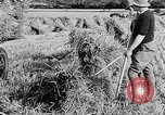 Image of Women Land Army United Kingdom, 1939, second 51 stock footage video 65675053192
