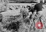 Image of Women Land Army United Kingdom, 1939, second 52 stock footage video 65675053192
