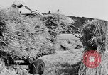 Image of Women Land Army United Kingdom, 1939, second 54 stock footage video 65675053192