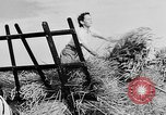 Image of Women Land Army United Kingdom, 1939, second 55 stock footage video 65675053192