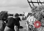 Image of Women Land Army United Kingdom, 1939, second 62 stock footage video 65675053192