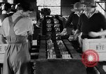 Image of Women Land Army United Kingdom, 1939, second 3 stock footage video 65675053193