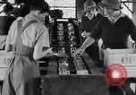 Image of Women Land Army United Kingdom, 1939, second 5 stock footage video 65675053193