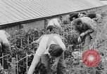 Image of Women Land Army United Kingdom, 1939, second 30 stock footage video 65675053193