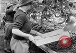Image of Women Land Army United Kingdom, 1939, second 42 stock footage video 65675053193