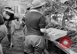 Image of Women Land Army United Kingdom, 1939, second 43 stock footage video 65675053193