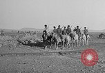 Image of American Military Mission to Armenia Mardin Turkey, 1919, second 42 stock footage video 65675053198