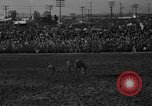 Image of bucking horses Los Angeles California USA, 1940, second 11 stock footage video 65675053253