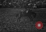Image of bucking horses Los Angeles California USA, 1940, second 13 stock footage video 65675053253