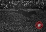 Image of bucking horses Los Angeles California USA, 1940, second 14 stock footage video 65675053253