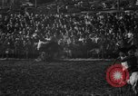 Image of bucking horses Los Angeles California USA, 1940, second 19 stock footage video 65675053253