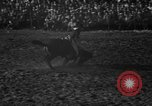 Image of bucking horses Los Angeles California USA, 1940, second 24 stock footage video 65675053253