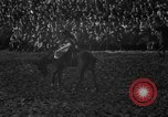 Image of bucking horses Los Angeles California USA, 1940, second 26 stock footage video 65675053253