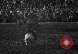 Image of bucking horses Los Angeles California USA, 1940, second 32 stock footage video 65675053253