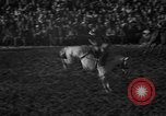 Image of bucking horses Los Angeles California USA, 1940, second 36 stock footage video 65675053253