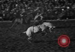 Image of bucking horses Los Angeles California USA, 1940, second 37 stock footage video 65675053253
