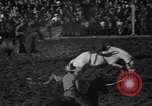Image of bucking horses Los Angeles California USA, 1940, second 38 stock footage video 65675053253