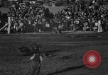Image of bucking horses Los Angeles California USA, 1940, second 45 stock footage video 65675053253