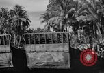 Image of Landing Crafts Mechanized Purata Bougainville Papua New Guinea, 1943, second 15 stock footage video 65675053304