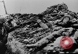Image of German forces battle Soviets on Eastern front in World War II Russia, 1944, second 8 stock footage video 65675053350