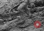 Image of German forces battle Soviets on Eastern front in World War II Russia, 1944, second 43 stock footage video 65675053350
