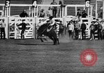 Image of Rodeo event Los Angeles California USA, 1945, second 15 stock footage video 65675053384