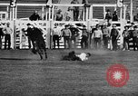 Image of Rodeo event Los Angeles California USA, 1945, second 16 stock footage video 65675053384