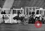 Image of Rodeo event Los Angeles California USA, 1945, second 19 stock footage video 65675053384