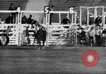 Image of Rodeo event Los Angeles California USA, 1945, second 20 stock footage video 65675053384