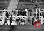 Image of Rodeo event Los Angeles California USA, 1945, second 30 stock footage video 65675053384