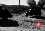 Image of Road construction Germany, 1939, second 8 stock footage video 65675053411