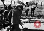 Image of Road construction Germany, 1939, second 16 stock footage video 65675053411
