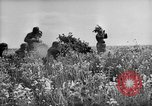 Image of German troops Voronezh Russia, 1943, second 12 stock footage video 65675053438