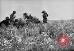 Image of German troops Voronezh Russia, 1943, second 13 stock footage video 65675053438