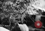 Image of German troops Voronezh Russia, 1943, second 37 stock footage video 65675053438