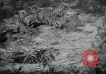 Image of Japanese suicide boat Okinawa Ryukyu Islands, 1945, second 31 stock footage video 65675053478