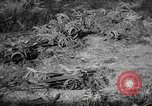 Image of Japanese suicide boat Okinawa Ryukyu Islands, 1945, second 33 stock footage video 65675053478