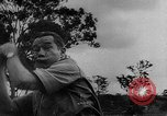 Image of Joe Brown Pacific Theater, 1943, second 42 stock footage video 65675053495