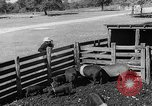 Image of texas ranch lifestyle mid 1940s Kerrville Texas USA, 1945, second 57 stock footage video 65675053501