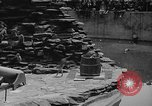 Image of Bronx Zoo New York City USA, 1941, second 55 stock footage video 65675053566