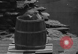 Image of Bronx Zoo New York City USA, 1941, second 56 stock footage video 65675053566