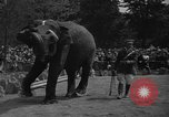 Image of Bronx Zoo New York City USA, 1941, second 62 stock footage video 65675053566